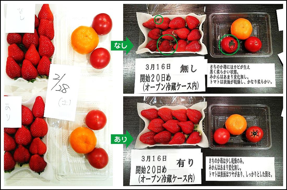 イチゴ、トマト、ミカンの検証結果